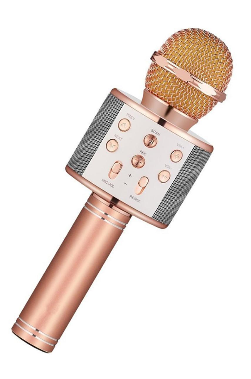 Микрофон для караоке 19